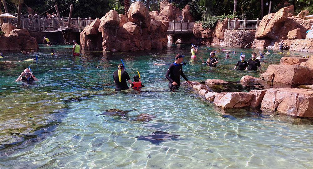 A parte rasa do The Grand Reef, onde é possível fazer snorkeling em meio a arraias e cardumes de peixes