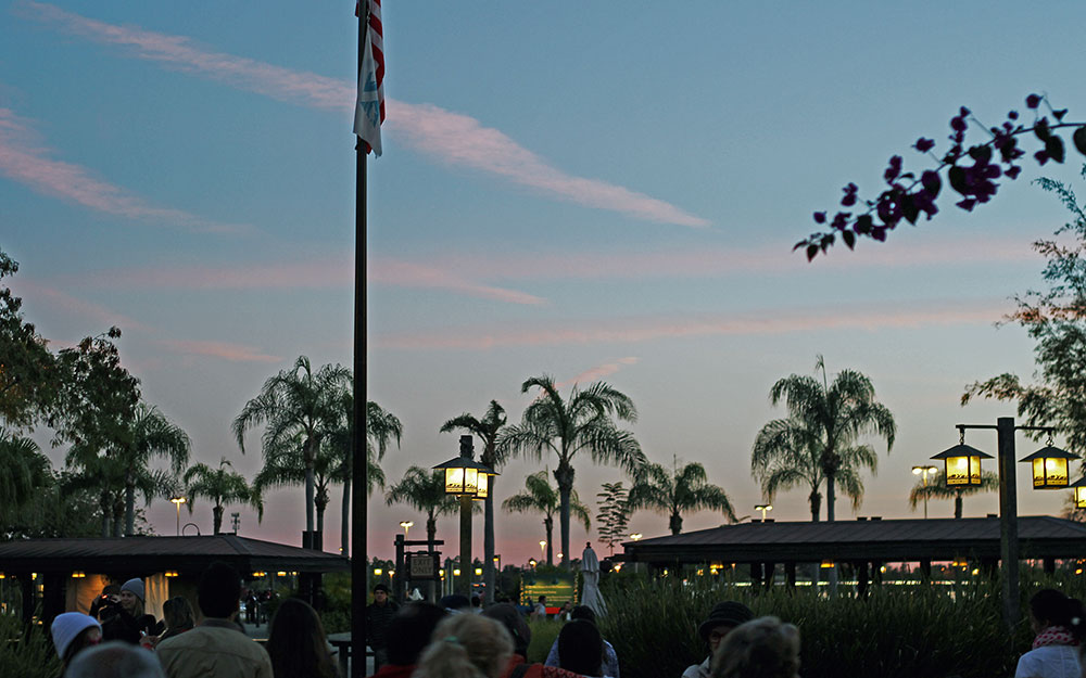 A noite caindo no parque Disney's Animal Kingdom